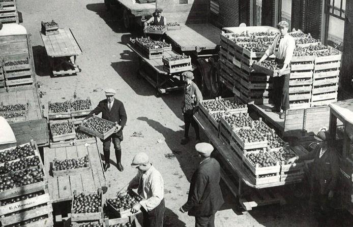 De tomaten uit het Westland werden niet hier gegeten, maar gingen naar Engeland.