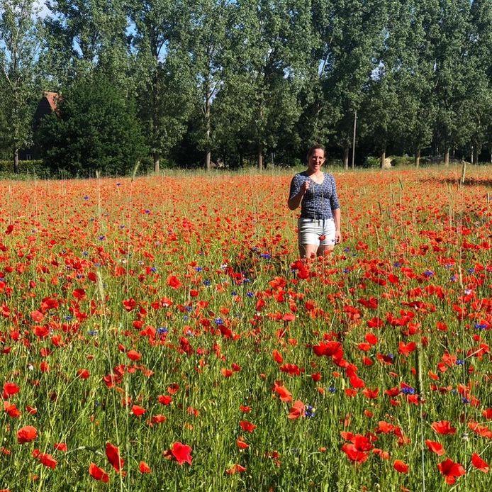 'Zondagochtend vroeg een heerlijke wandeling maken in het centrum van Eindhoven. Met heel veel groen en prachtige velden met klaprozen.' (lezersfoto)