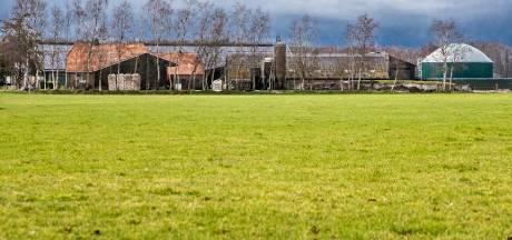 Boer bouwt 'stal' in Olst, maar er komen geen koeien in. Buurman: 'wat een onzinverhaal'