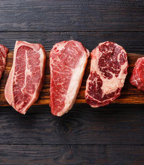 Hoeveel dieren eten Nederlanders gemiddeld in hun leven? Test je kennis in acht vragen