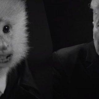 david-lynch-verrast-filmwereld-met-korte-film-op-netflix