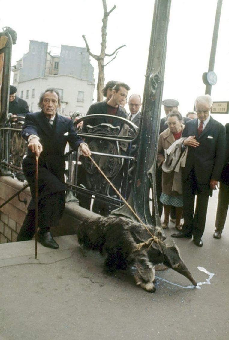 Salvador Dali laat zijn miereneter uit in Parijs (1969).