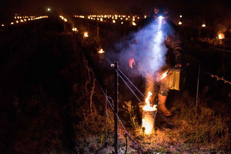 Een wijnteler in de regio van Nantes (Frankrijk) steekt een vuurkorf aan, om de nachtvorst te bestrijden. Beeld AFP