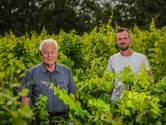 """Guido en zoon Maxim maken biologische wijnen: """"Wij gebruiken geen insecticiden en herbiciden waardoor er meer leven op het domein is"""""""
