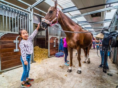 Familie Duijndam viert 50-jarig bestaan manege De Prinsenstad