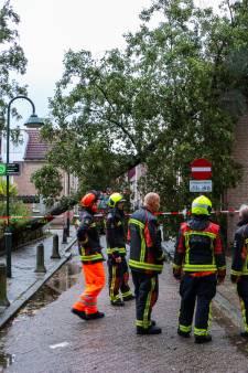 Boom waait tegen woning Gouda, tientallen meldingen van stormschade in regio: 'Ze blijven binnenstromen'