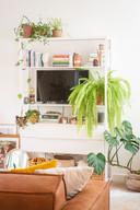 Als onderdeel van een meubel (Ikea) met veel deco en plantjes valt een televisie minder op.
