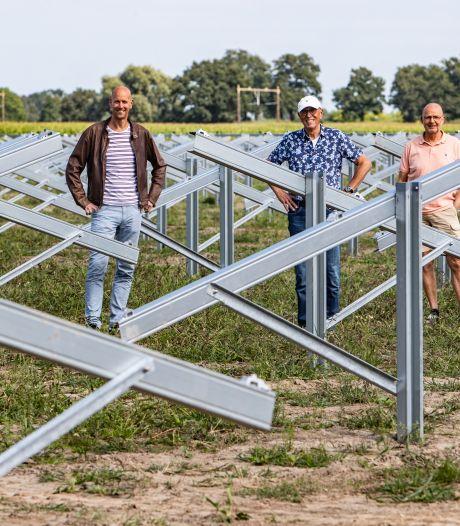 Wijhe wil laten zien dat zonnepark en biodiversiteit prima samengaan: 'We verrijken hier juist de natuur'