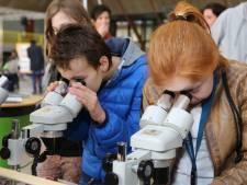 Universiteit Antwerpen organiseert opnieuw Kinderuniversiteit deze zomer