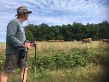 Erik de Waal (65) geeft z'n pelgrimstocht op