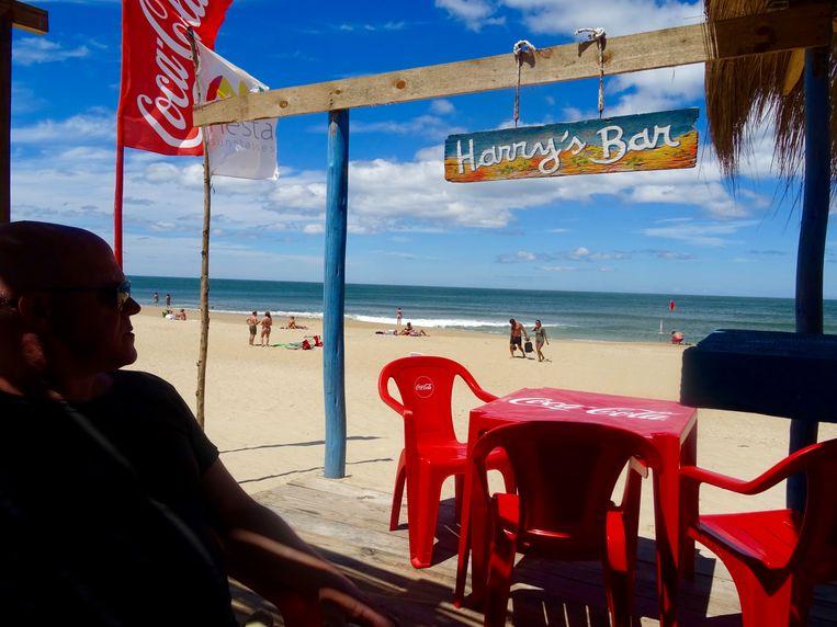Harry's Bar op het strand: het beste adres voor al uw inktvisringen. Beeld rv