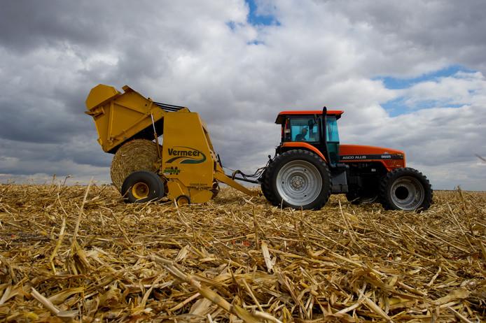 Maïsafval wordt verzameld voor de productie van bio-ethanol. Voedselgewassen moet je niet als brandstof gebruiken, vinden tegenstanders. Foto: DSM