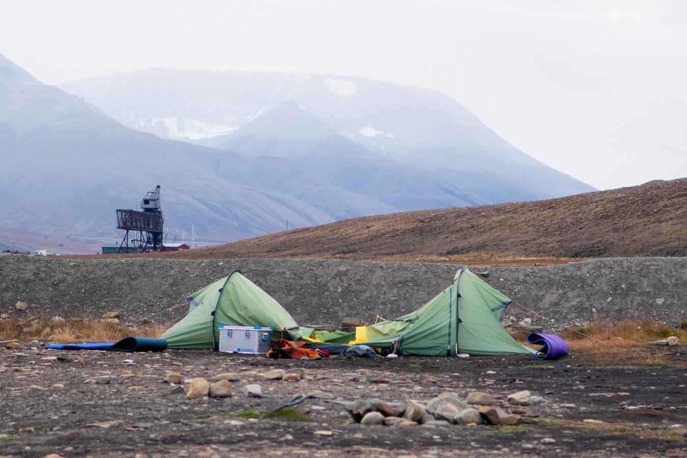 De zwaar gehavende tent van Job Kootte na de ijsbeeraanval.