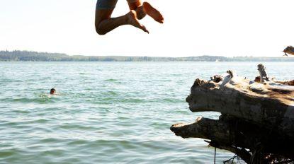 Giftige bacterie ontdekt in Damvalleimeer: zwemmen wordt streng verboden