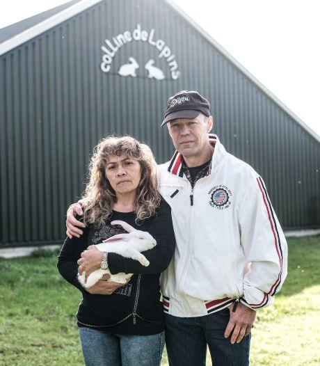 Dubbel gevoel bij straf voor 'vegan streaker' na inbraak in konijnenstal: 'Emotionele schade is heel groot'