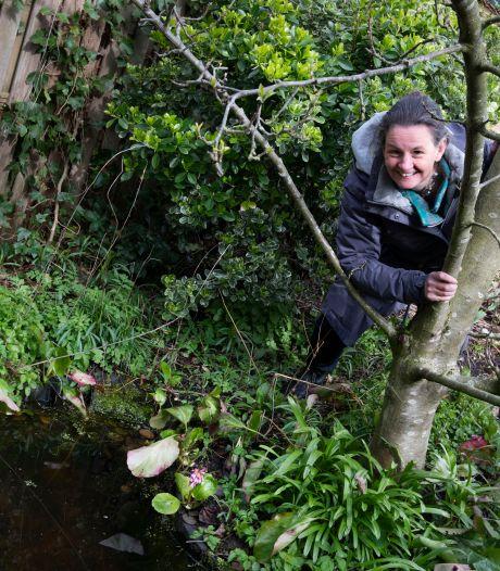 Dit is hoe je die mooiste vogels, bijen en vlinders in je tuin krijgt: 'Laat takjes en blad liggen'