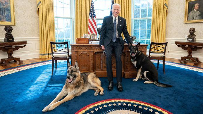 Biden poseert met zijn honden Champ (links) en Major.