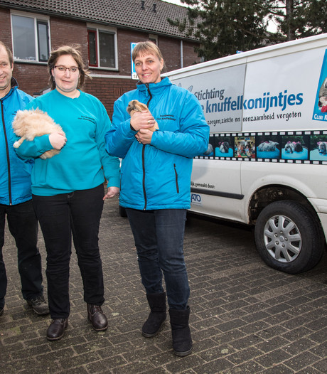 Therapeutisch konijntjes knuffelen in gevaar door kapotte bus stichting
