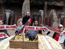Gio en Olli bij de olifanten