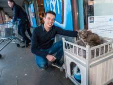 Het hele dorp is gek op kat Silver (16), die zelfs een eigen huisje bij de Albert Heijn heeft