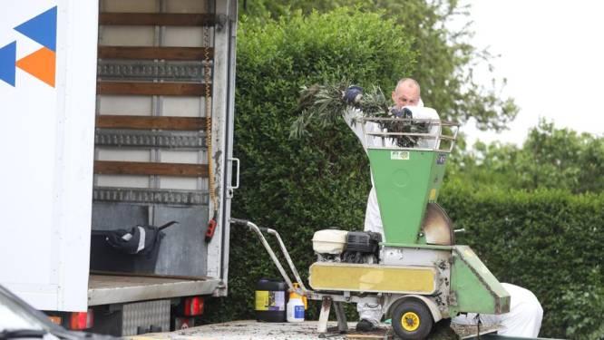 Wietplantage ontdekt in Hasselt langs drukke steenweg