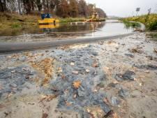 Milieuramp in de Berkel: Friesland Campina vervuilde, het waterschap betaalde