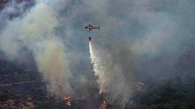 Italiaanse brandweer bestrijdt meer dan 200 bosbranden in zuiden van het land