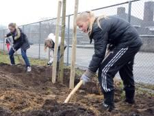 Slechts vijf van de 47 scholen hebben voldoende bomen in de omgeving
