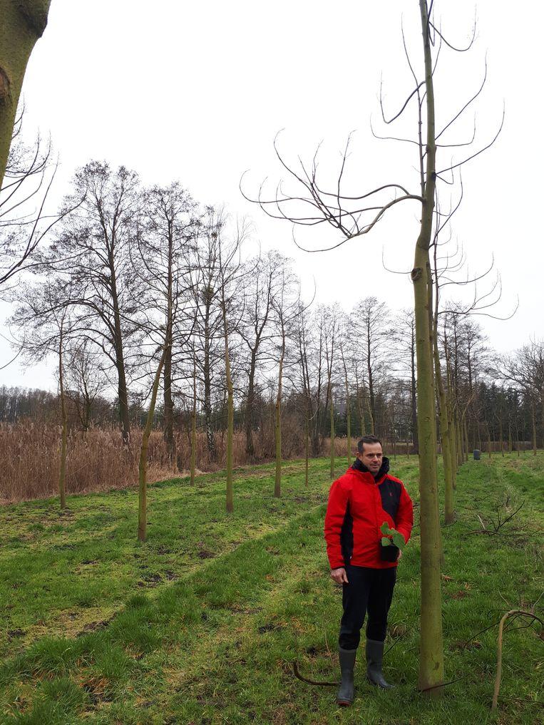 Landbouwer Jacek Glezer naast een twee jaar jonge boom met een oxytree-stekje in zijn hand Beeld Ekke Overbeek