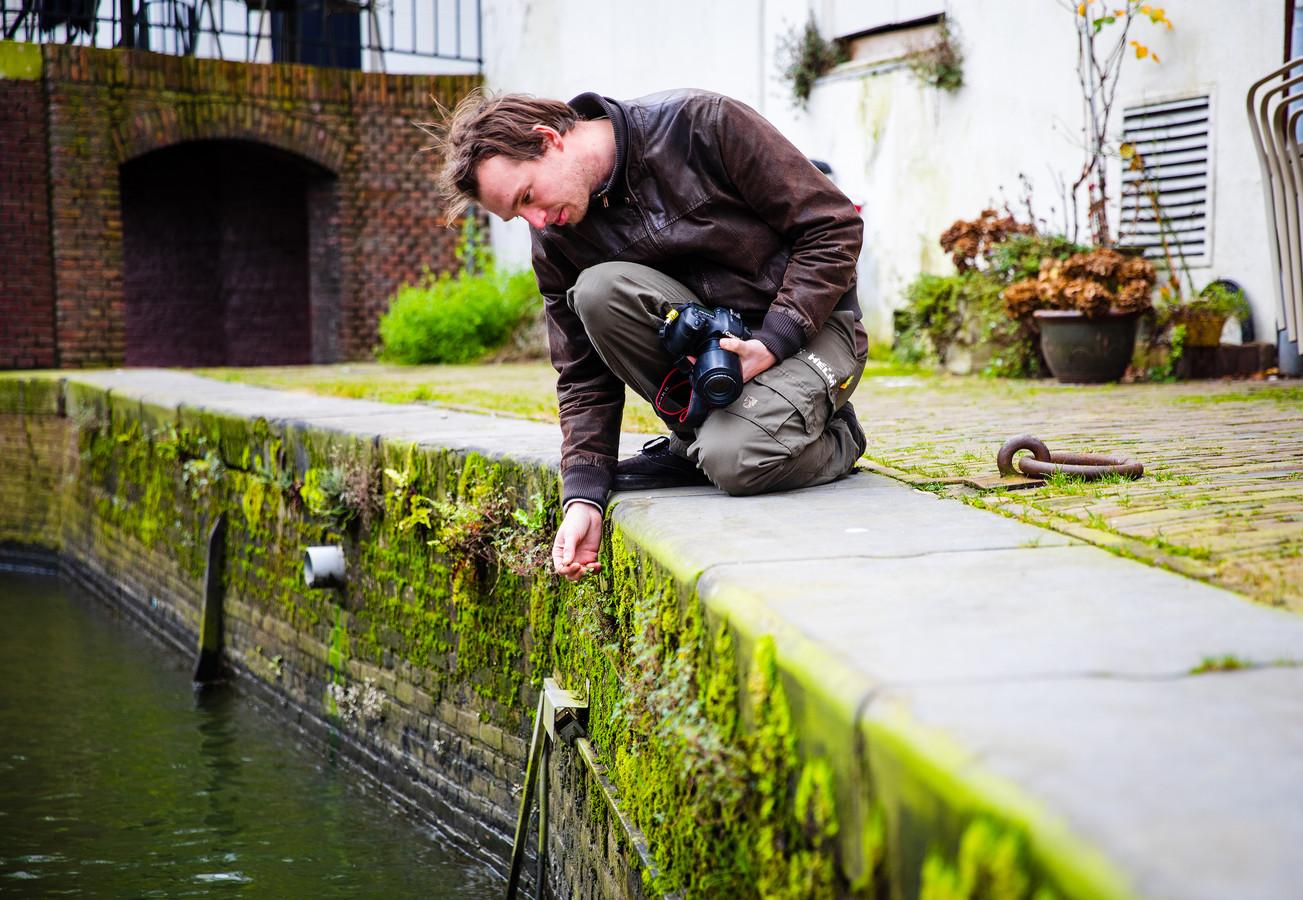 Ecoloog Merijn Loeve met zijn handen tussen de 'stoepplantjes'. Wie goed kijkt, ziet dat er een hele wereld onder onze voeten ligt, zegt hij.