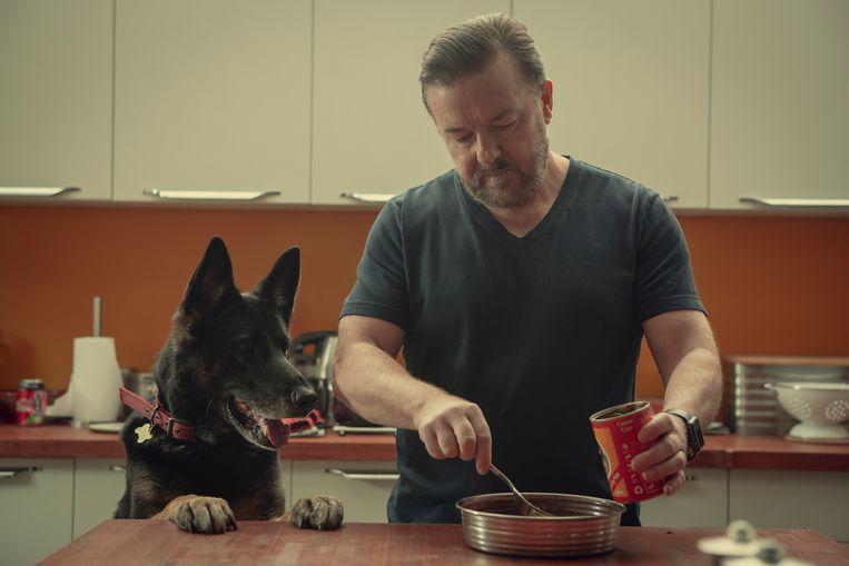 Ricky Gervais als Tony in After Life 2, met zijn trouwe hond Brandy. Beeld Netflix