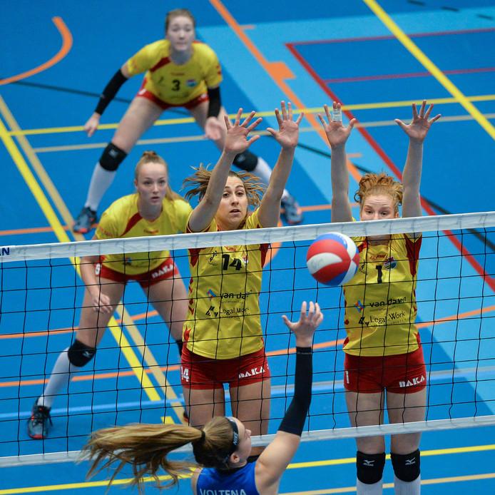 De volleybalsters van Dynamo nemen het komend seizoen in de topdivisie weer op tegen de buren van Alterno 2.