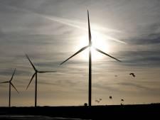 Ook Molenlanden zegt 'ja' tegen windmolens bij A15 en zonnepanelen op bedrijfsdaken