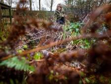 Harderwijkse Juffie in 't groen geeft tips voor verantwoorde tuin: niet te netjes, meer groen en water de grond in
