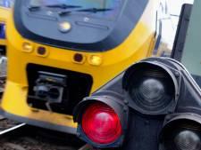 Trein staat uur stil na botsing met vogel tussen Houten en Culemborg