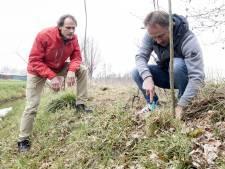 Hoe Gerrit Klaassen werd gered door het bosje van Poortman: 'Elke twijg heeft zijn eigen verhaal'