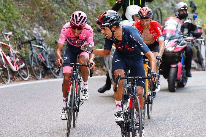 Daniel Felipe Martinez moedigt ploeg- en landgenoot én rozetruidrager Egan Bernal aan op de slotklim van de 17de Giro-rit.