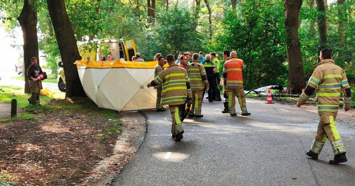 Motorrijder overleden na botsing tegen boom.