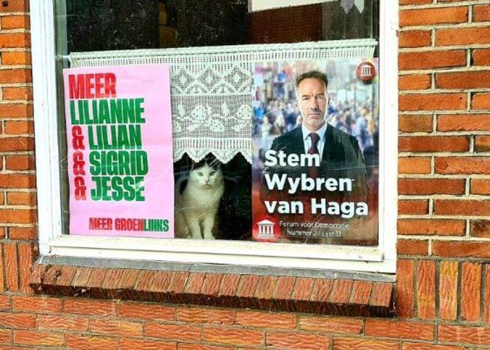 De verkiezingsposters en kat in Nijmegen.