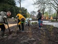 Tienduizend euro voor basisscholen die speelplein vergroenen: 'Kinderen hebben wensen op papier gezet'