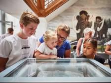 Boijmans en Kunsthal winnaars van warme vakantie, vooral dankzij airco