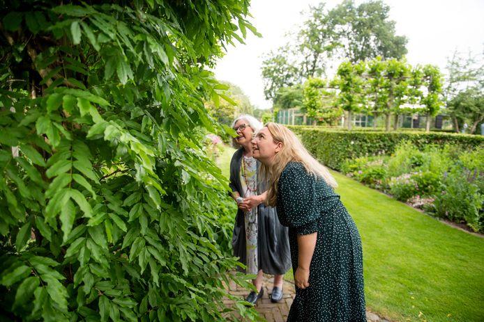 Veel bezoekers zijn al vaker een kijkje komen bij de Wierdense Haarboershof tijdens het Rondje Tuinen.