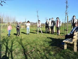Dizzy Me plant Dizzy Trees in de Muziekvallei van Gooik