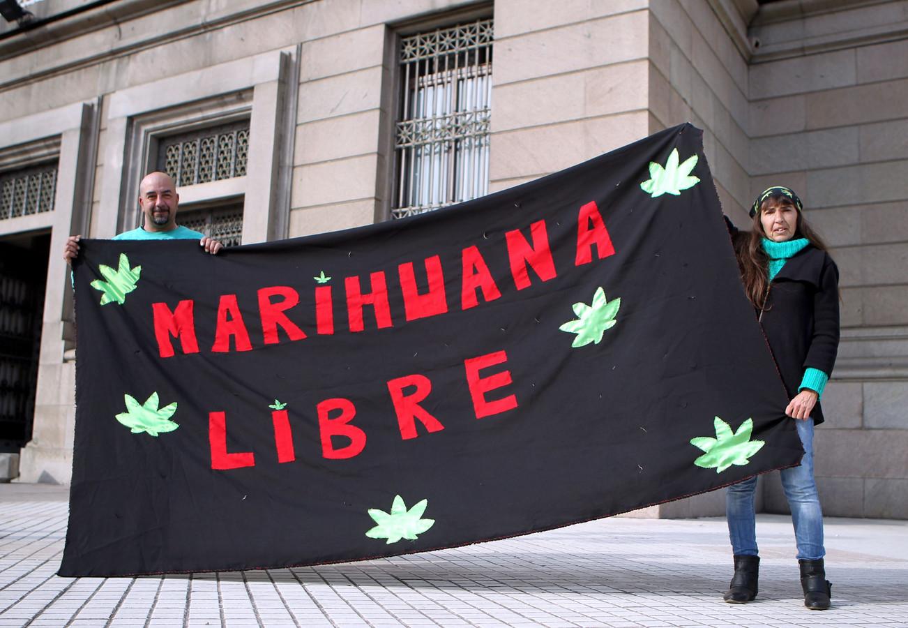 In Uruguay gold er voor de invoering van de wietwet een stevige lobby om cannabis te reguleren en legaliseren.