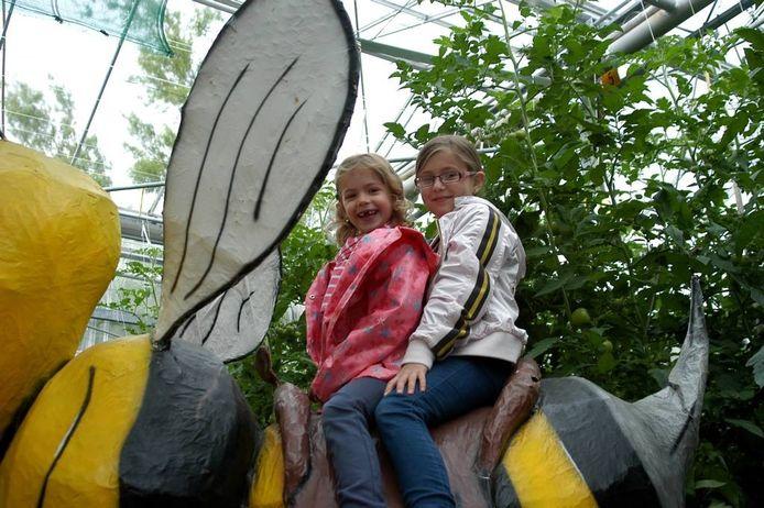 Imke (links) en Lieve Timmermans zitten op een Blije Bij bij Natuurlijk Tomaat in Dongen. foto Gertjan Stads/pix4profs