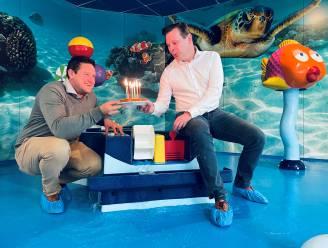 """Zwembad De Alk viert 20ste verjaardag met feestweek: """"2,5 miljoen bezoekers sinds opening in 2000"""""""