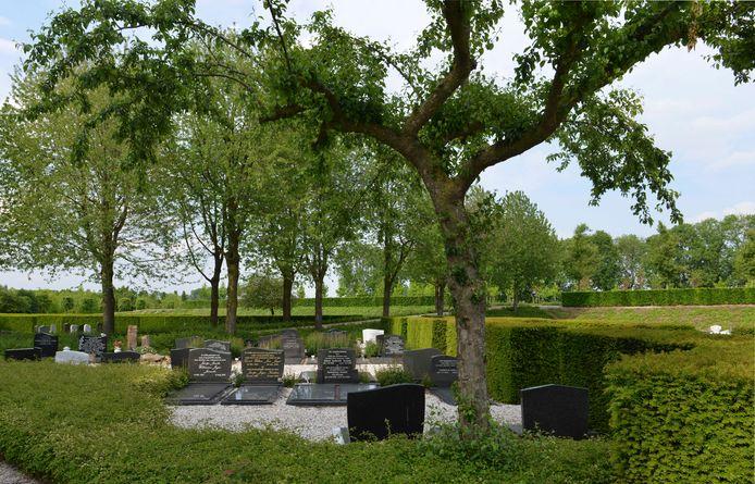 Niet alle gedenktekens op begraafplaatsen in Rivierenland liggen er zo verzorgd bij als hier in Opheusden.