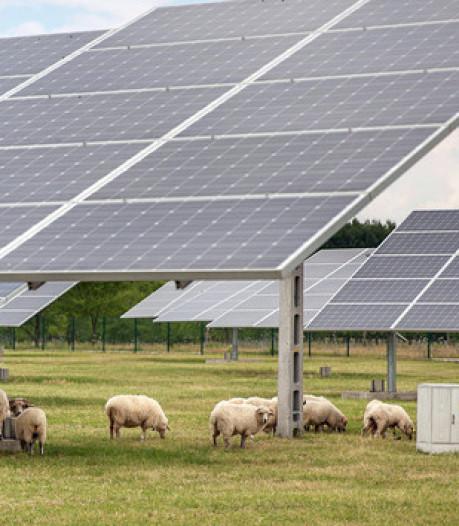 Gedeputeerde Drenth: geen massa zonnepanelen in weilanden