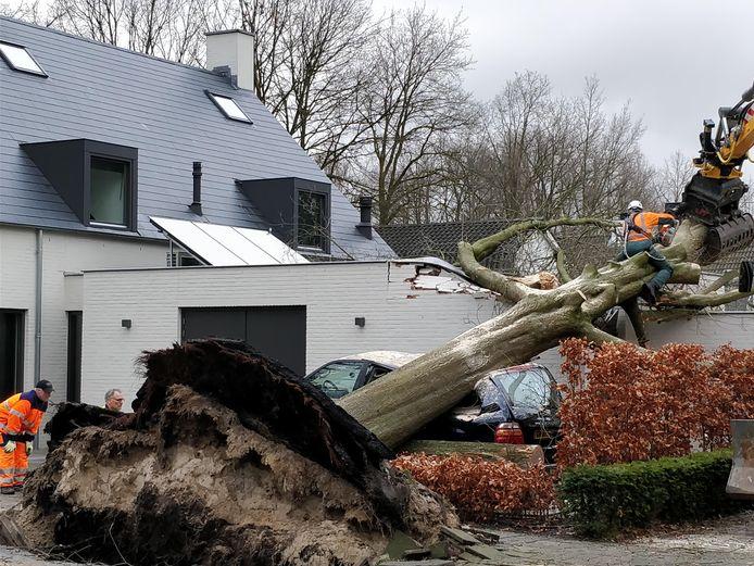 Boom op auto (hoek Groenstraat/Baerdijk).