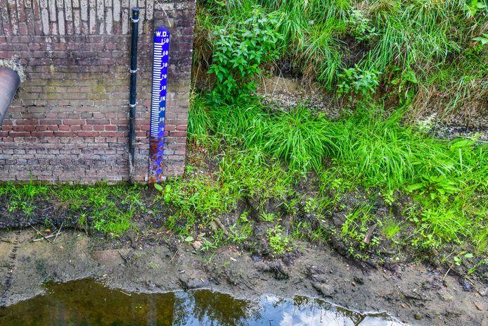 Het Sterkselsch Kanaal viel in de zomer zo goed als droog. Honderden vissen werden gevangen en elders uitgezet.